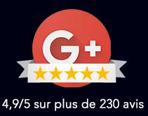 Avis Google+
